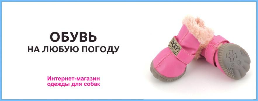 Обувь на любую погоду